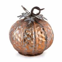 Pumpkin 14 D x 14.5 H Iron - 1