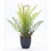 Fern Potted (Set of 2) 11  x 18 H Plastic - 1