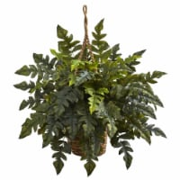 Holly Fern Hanging Basket