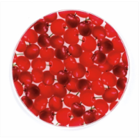 Andreas TR-4 Cherries Silicone Trivet - Pack of 3 - 3