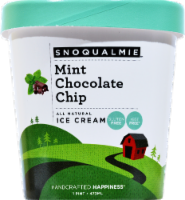 Snoqualmie Mint Chocolate Chip Ice Cream - 16 Fl Oz