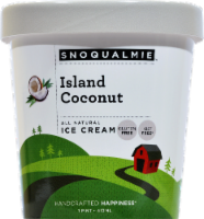 Snoqualmie Island Coconut Ice Cream - 16 fl oz