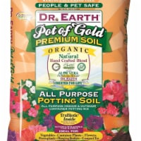 Dr Earth 249922 16 qt. Pot of Gold Organic All Purpose Potting Soil for Indoor & Outdoor Cont