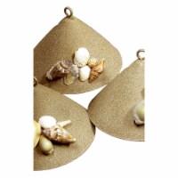 Window Seashell, Sugar Sand - 1