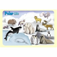 Painless Learning POL-1 Polar Life Placemat - Pack of 4