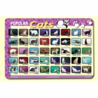 Painless Learning CAT-1 Popular Cats Placemat - Pack of 4