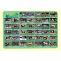 Painless Learning HOR-1 Horses Placemat - Pack of 4 - 1