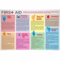 Painless Learning AID-1 First Aid Placemat - Pack of 4