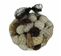 Neutral White Decorative Mushroom Mix Assorted Dried Botanicals In a Bag - One Size