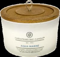 Chesapeake Bay Candle® Aqua Marine Coffee Table Jar Candle - White