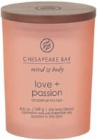 Chesapeake Bay Candle Mind and Body Peace and Tranquility Jar Candle - Frosted Coral