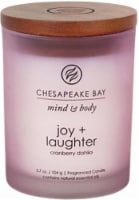 Chesapeake Bay Candle Mind and Body Joy and Laughter Jar Candle - Frosted Pink