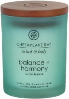 Chesapeake Bay Candle Mind and Body Balance and Harmony Jar Candle - Frosted Turquoise