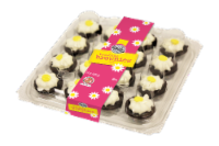 Two-Bite Daisy Party Planner Brownies