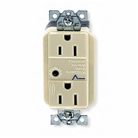 Hubbell Wiring Device-Kellems Receptacle,Deco,15A,5-15R,125V,Ivory  HBL5260ISA - 1