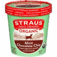 Straus Family Organic Mint Chocolate Chip Ice Cream - 16 fl oz