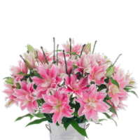 10-Stem Rose Lilies with Ponytail (Approximate Delivery is 1-3 Days)