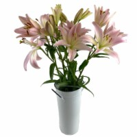 Sun Valley Pink Diamond Floral Arrangement in Vase (Approximate Delivery 1-3 Days)