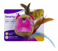 SmartyKat Chit Chatter Cat Toy