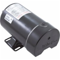 Regal Beloit BN35V1 1.5 HP Flex 48 Thru-Bolt Pool & Spa Pump Motor 48Y Threaded Shaft - 1