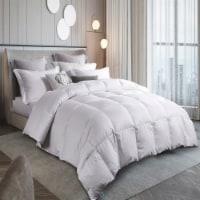 Martha Stewart 300 Thread Count White Down Comforter - King - King