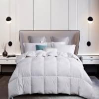 Martha Stewart Goose Down & Feather Comforter - White - Twin