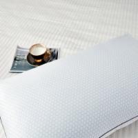 Serta 233 Thread Ct Summer & Winter White Goose Feather Pillow - Jumbo
