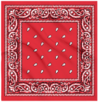 James Paul Products Bandana - Red