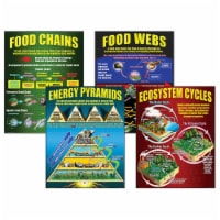 Ecosystems Teaching Posters, Set of 4 - 1