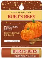 Burt's Bees Lip Balm - Pumpkin Spice with Beeswax - 0.15 oz