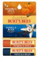 Burt's Bees Pumpkin Spice and Vanilla Bean Moisturizing Lip Balms - 2 ct