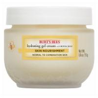 Burt's Bees Skin Nourishment Hydrating Gel Cream - 1.8 oz