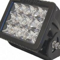 Golight Flood Light,6000 lm,Rectangular,LED - 1