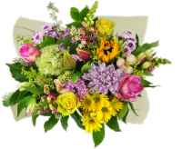 Concerto Melody of Colors Mixed Bouquet - 26-stem