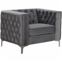 Best Master Furniture Aineias 38  Transitional Velvet Accent Chair in Gray - 1