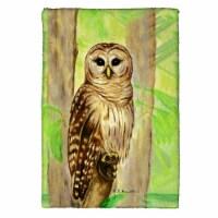 Betsy Drake KT240 Owl Kitchen Towel - 1