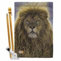 Breeze Decor BD-WL-HS-110096-IP-BO-D-US16-AL 28 x 40 in. Lion Nature Wildlife Impressions Dec - 1