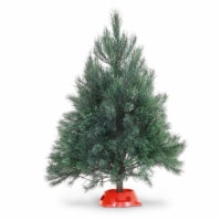 Dutchman Tree Farms Scotch Pine Tabletop Fresh 3-4 Foot Christmas Tree With Stand