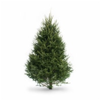 Dutchman Tree Farms Balsam Fir Fresh 6-7 Foot Christmas Tree