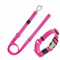 3M Reflective 2-in-1 Durable Martingale Dog Leash and Collar - Medium / Pink