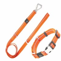 3M Reflective 2-in-1 Durable Martingale Dog Leash and Collar - Large / Orange - 1