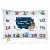 Toddler Pillow With Pillowcase (Kea123)