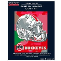 Ohio State Buckeyes Team Pride Paint by Number Craft Kit - 1 ct