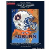 Auburn Tigers Team Pride Paint by Number Craft Kit - 1 ct