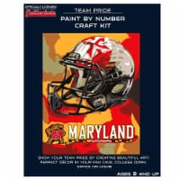 Maryland Terrapins Team Pride Paint by Number Craft Kit - 1 ct