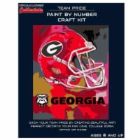 Georgia Bulldogs Team Pride Paint by Number Craft Kit - 1 ct