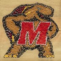 Maryland Terrapins Team Pride String Art Craft Kit - 1 ct