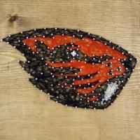 Oregon State Beavers Team Pride String Art Craft Kit - 1 ct