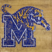 Memphis Tigers Team Pride String Art Craft Kit - 1 ct