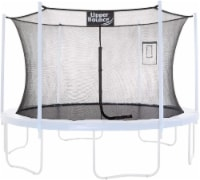 Safety  Enclosure Net Fits 14 FT Round Trampoline,4 Poles (2 Arches) - Black